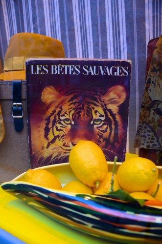 "Display "" Les Bêtes Sauvages "" – March 2nd 2016"